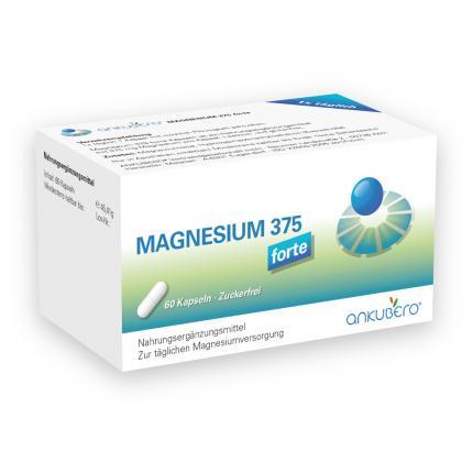 Magnesium 375 Forte Kapseln