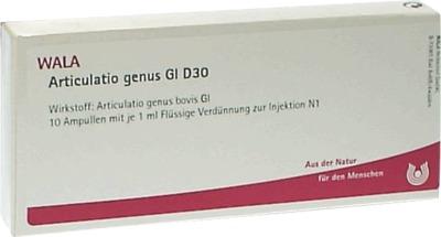 ARTICULATIO genus GL D 30 Ampullen