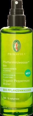 PFEFFERMINZWASSER Bio FrischeKick