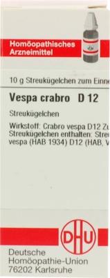VESPA CRABRO D 12 Globuli